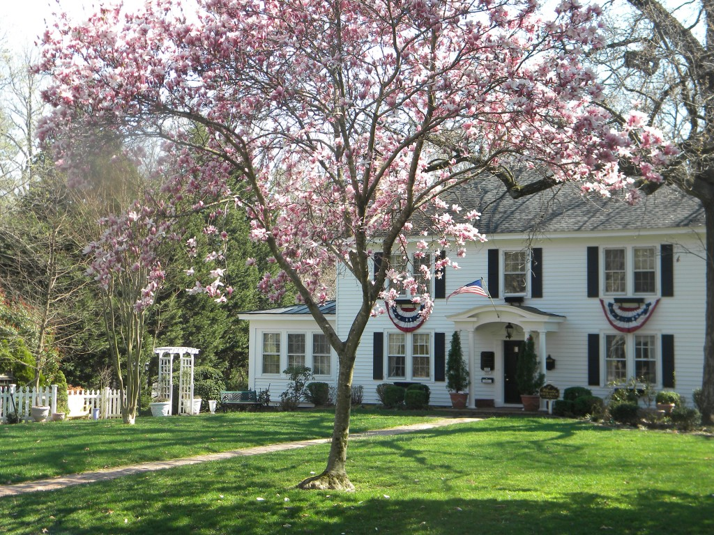 A Taste of Spring in Williamsburg Va